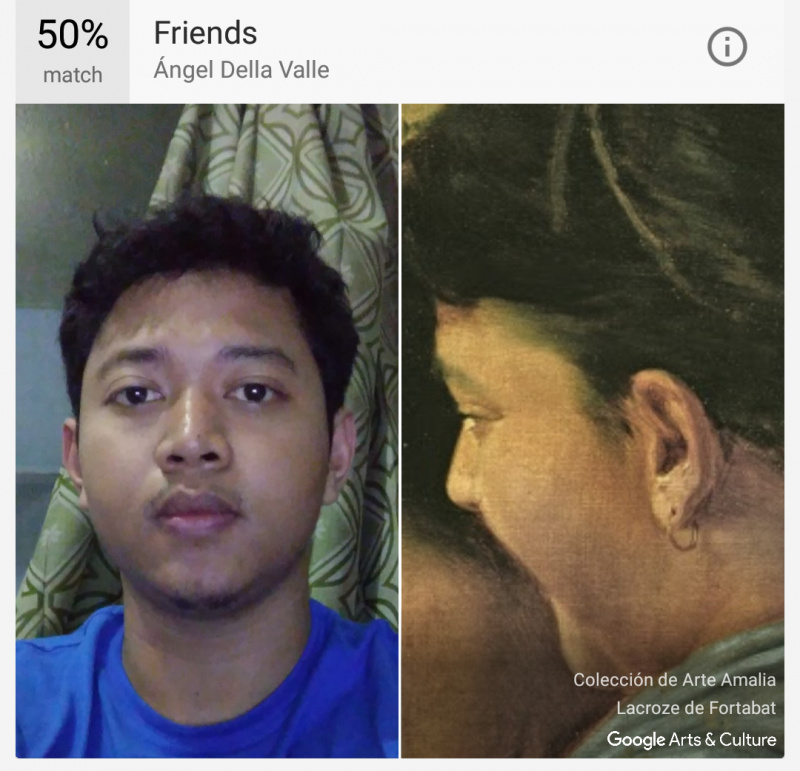 Google Arts & Photo